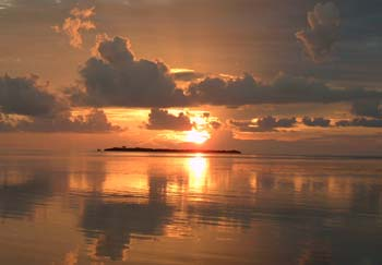 Bird Island at Sunset